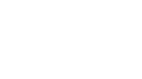 Fox Media Group Logo